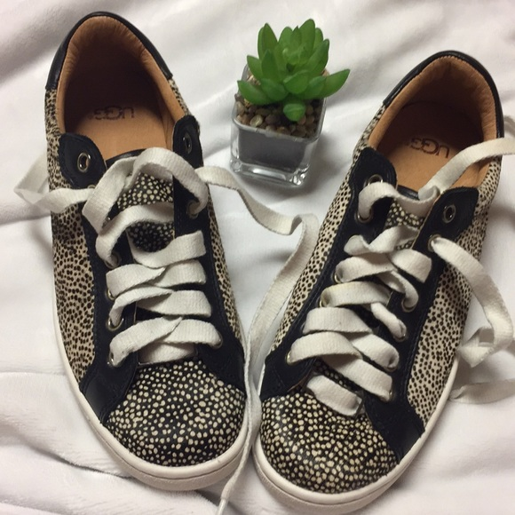 UGG gorgeous Milo Exotic Lace Up SNEAKERS. M 5b6b9b95cdc7f78a724e1c53 67a1c6302